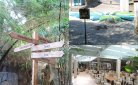 Vakantie in Center Parcs De Vossemeren: volop activiteit voor het hele gezin