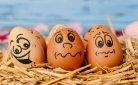 Fabel of (f)eitje: alles wat je MOET weten over eieren!