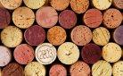 Creatief met kurk: van stempel tot plantenbak