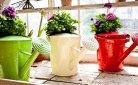 Een gerecycleerde tuininrichting: pimp je tuin in 5 groene tips
