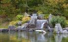 Uitstapje maken? Cultuur snuiven in Japanse Tuin Hasselt!